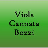 bozzi