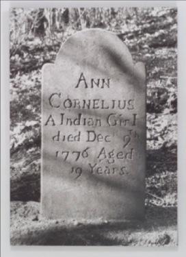 ann-cornelius