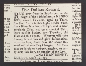 Run Away Slave Advertisement for a Young Man Named Francis